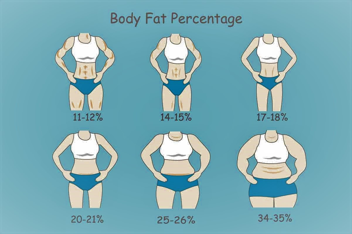 How Body Fat Percentage Actually Look Like